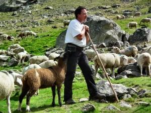 Pastoralisme